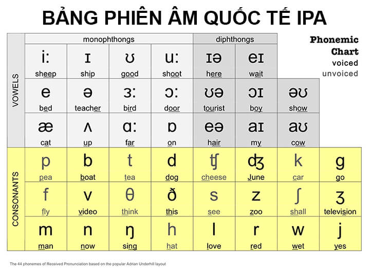 Bảng phiên âm quốc tế IPA - Lộ Trình Tự Học Từ 0 Lên IELTS 6.5 và 7.0 Cho Người Mới Bắt Đầu